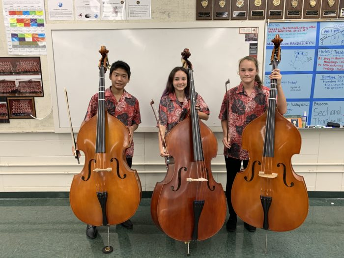 Double Bass Section 2019-2020
